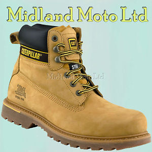 cat shoes image is loading caterpillar-holton-sb-steel-toe-cap-safety-honey- thbuenr