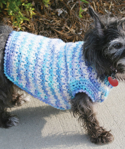 crochet dog sweater buhyrtt