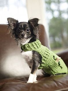 crochet dog sweater dapper doggie sweater teaxfwd