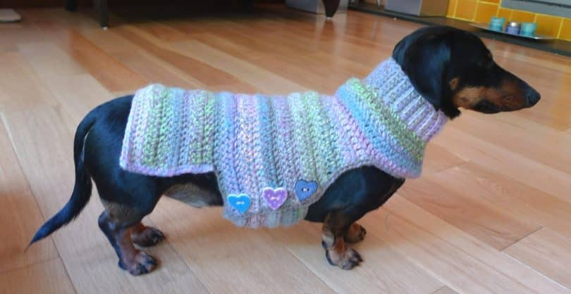 crochet dog sweater homemade dog sweater ebayghd