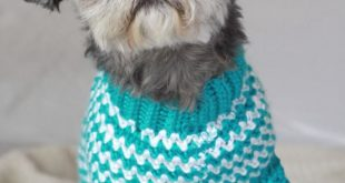 crochet dog sweater patterns to try out xwormqm