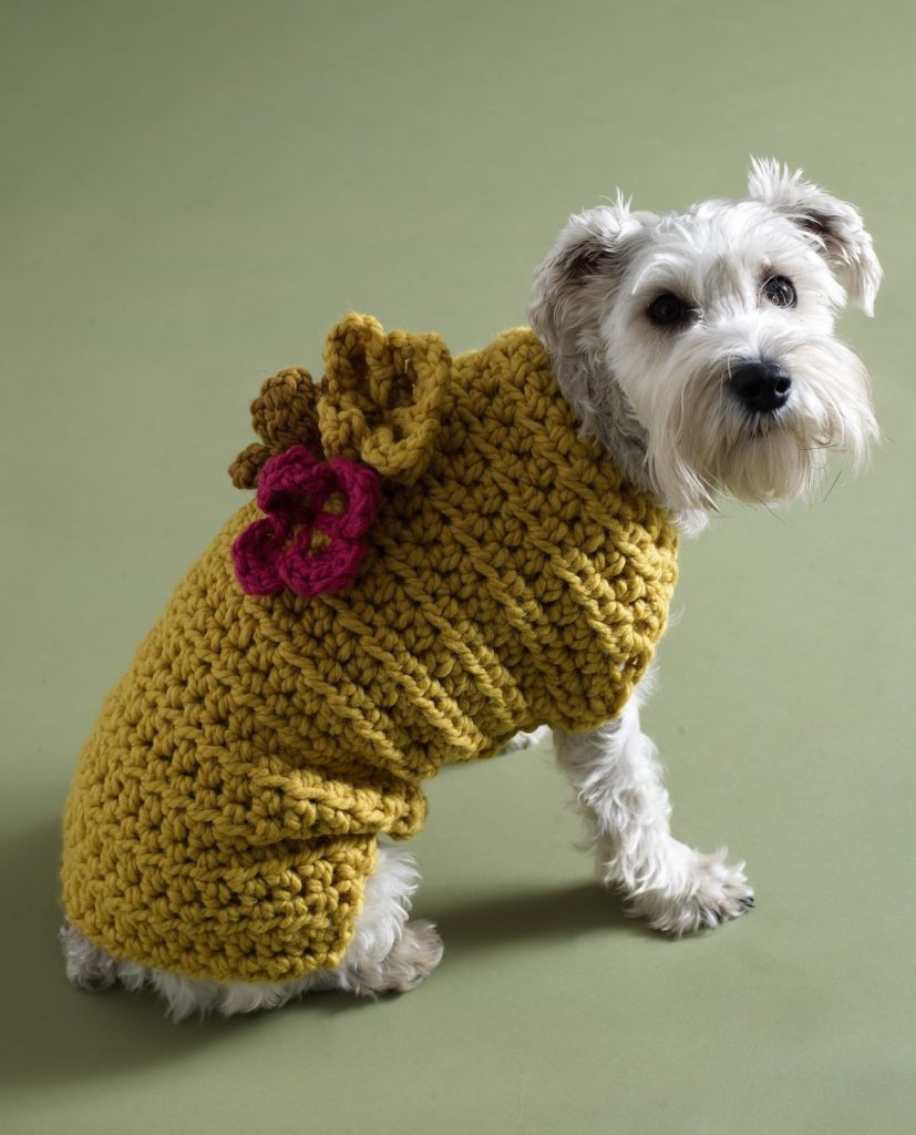 free crochet dog sweater patterns by lion brand dsdrmga