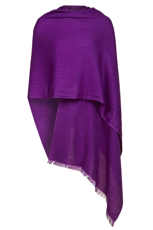 purple cashmere pashmina nzvmczr