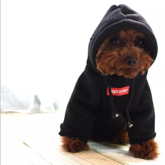 Supreme Sweaters | Dog Hoodies | Poshmark