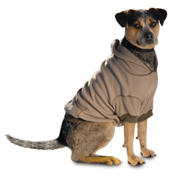 On-the-Go Thermal Dog Hoodie - Taupe   BaxterBoo