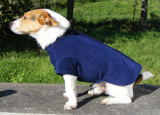 Fleece Dog Jumpers ▻ Dress The Dog - clothes for your pets!
