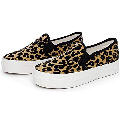 Leopard Print Sneaker: Amazon.com