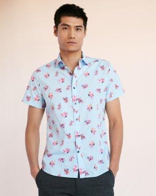 A choice of muscular man:   Short sleeve shirt