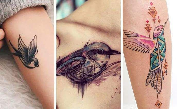 85+ Cute and Artistic Bird Tattoo Designs You Want to Try Next .