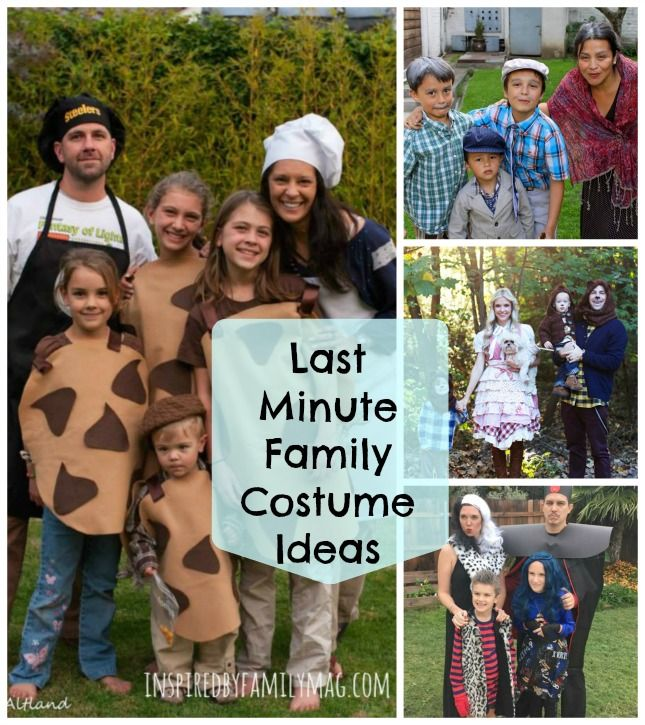 Last Minute DIY Family Halloween Costumes | Family themed .