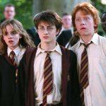 Harry Potter Halloween Costume  Ideas