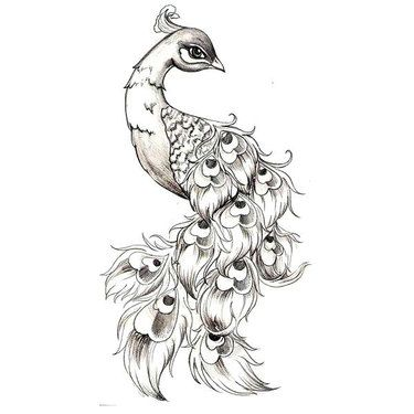 244 Most Amazing Tattoo Designs | Peacock tattoo, Small peacock .