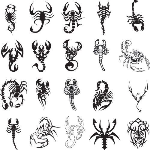 Freepik | Graphic Resources for everyone | Tattoos, Scorpio tattoo .