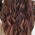Chestnut Hair Color Ideas