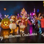 Disney Inspired Diy Halloween  Costumes