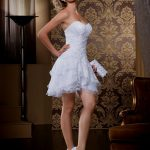 Gorgeous Short Wedding Dresses